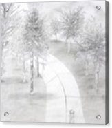 Lighted Pathway Acrylic Print