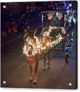 Lighted Pony Acrylic Print
