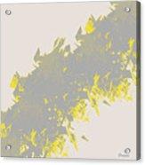 Lightening 2  Acrylic Print