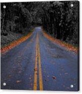 Lighter Paths Acrylic Print