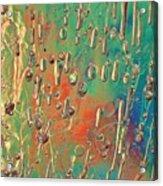 Lighthearted Acrylic Print