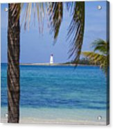 Lighthouse Under Palm Acrylic Print