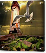 Lighthouse With Seagulls Acrylic Print by Meirion Matthias