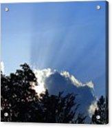 Lighting Up The Sky Acrylic Print