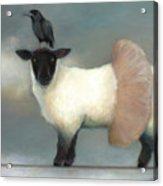 ...like Lambs.. Acrylic Print by Katherine DuBose Fuerst