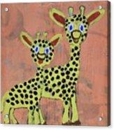 Lil Giraffes Acrylic Print