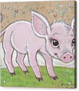 Lil Piglet Acrylic Print