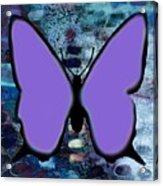 Lila Papillon Acrylic Print