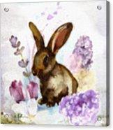 Lilac And Bunny Acrylic Print
