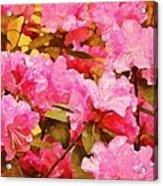Lilac Candy Acrylic Print