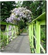 Lilac Colour  Crossing Acrylic Print