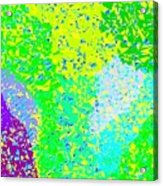 Lilac Lane Acrylic Print