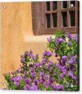 Lilacs And Adobe Acrylic Print