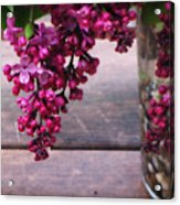 Lilacs In A Vase Acrylic Print