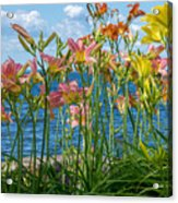 Lilies At The Waterfront Acrylic Print