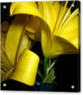 Lilliums By Two Acrylic Print