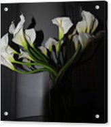 Lilly Of The Dark Acrylic Print