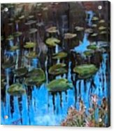 Lilly Pads And Reflections Acrylic Print