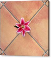 Lily Alone On Tile Acrylic Print