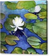 Lily At Little Spider Lake Acrylic Print