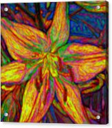 Lily In Abstract Acrylic Print