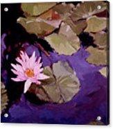 Lily Pad Acrylic Print