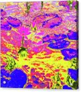 Lily Pads And Koi 11 Acrylic Print