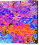 Lily Pads And Koi 17 Acrylic Print