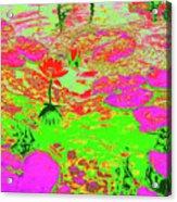 Lily Pads And Koi 19 Acrylic Print