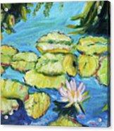 Lily Pads Mo Botanical Garden I Acrylic Print