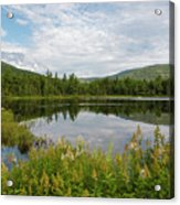 Lily Pond - White Mountains, New Hampshire Acrylic Print