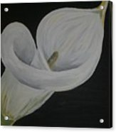 Lily Three Acrylic Print