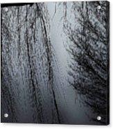 Limbs Acrylic Print