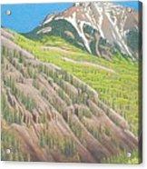 Lime Creek Canyon Acrylic Print