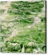 Limestone Detail Minerva Springs Yellowstone National Park Acrylic Print