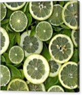 Limons Acrylic Print