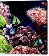 Lindsay's Aquarium Acrylic Print