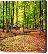Linn Run Pennsylvania 2 - Paint Acrylic Print