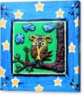 Lint Owl Acrylic Print