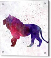 Lion 01 In Watercolor Acrylic Print