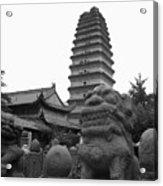Lion And Pagoda Acrylic Print