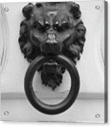 Lion Door Knocker In Brussels Acrylic Print