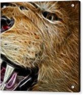 Lion Fractal Acrylic Print