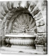 Lion Head Fountain Acrylic Print