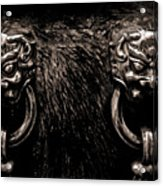 Lion Head Handle Acrylic Print