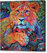 Lion In Burst Acrylic Print