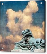 Lion In The Clouds Acrylic Print