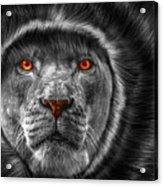 Lion Lady   -3 Acrylic Print