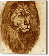 Lion Acrylic Print