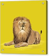 Lion Painting Acrylic Print